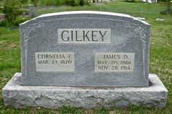 James Drew Gilkey