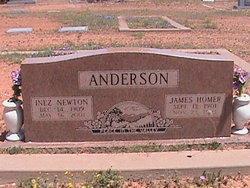 Inez <i>Newton</i> Anderson