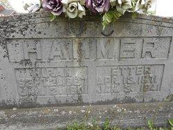Hiram L Hammer