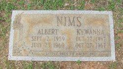 Albert Nims