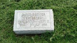 David Ulester Krebbeks