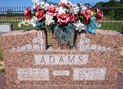 Carl Bryan Adams