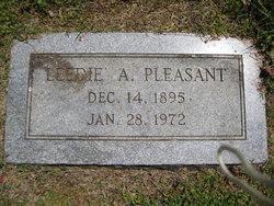 Ann Lee Leedie <i>Teafatiller</i> Pleasant