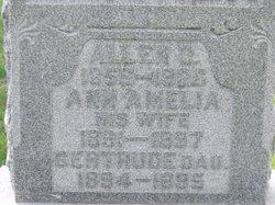 Ann Amelia <i>Hodge</i> Krisher