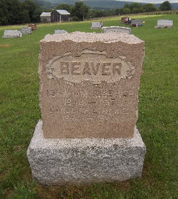Abraham Whitner Beaver
