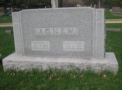 William S Agnew
