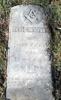 David M Halley