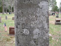 Andrew D. Berry