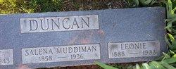 Salena <i>Muddiman</i> Duncan