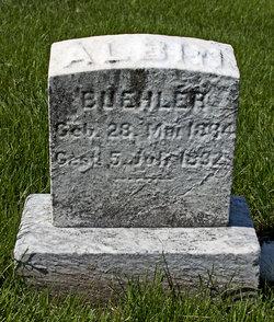 Albin Buehler