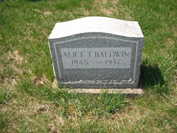 Alice T Baldwin