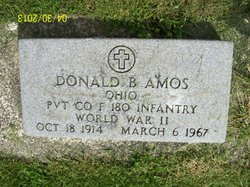 Pvt Donald B Amos