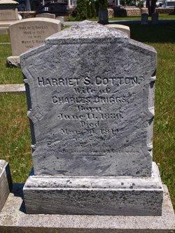 Harriet S <i>Cotton</i> Briggs