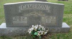 Anita <i>Hughes</i> Cameron