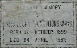 Toong Njong Leong