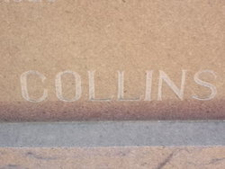 Martha J Collins