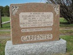 Percival Percy Carpenter