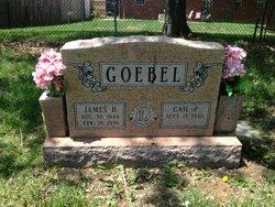 James H Goebel