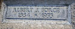 Albert J Force