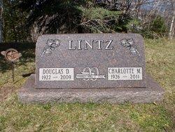 Douglas D Lintz