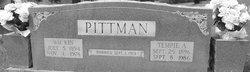 William McKinley Kin Pitman