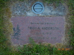Troy A Anderson