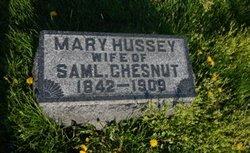 Mary <i>Hussey</i> Chesnut