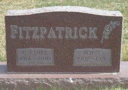Roy J Fitzpatrick