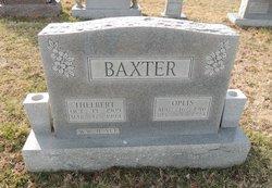 Oplis <i>Bland</i> Baxter
