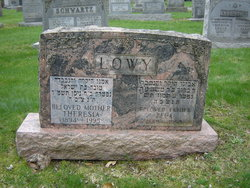 Theresia <i>Posner</i> Lowy