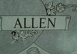 Cathy <i>Hudson</i> Allen