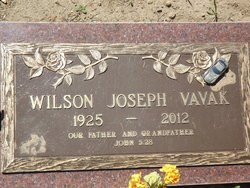 Joseph Wilson Joe Vavak