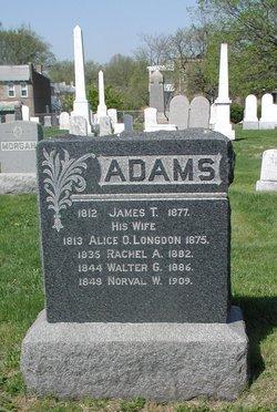 Rachel A Adams