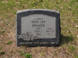 Tony Lee Pollack