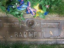 Carlos J Barnett, Jr