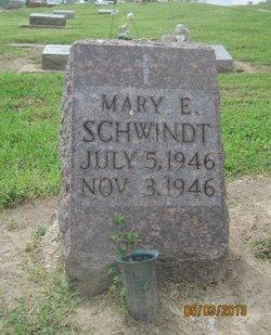 Mary E Schwindt