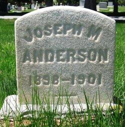 Joseph M. Anderson