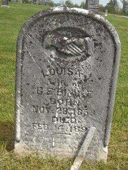 Louisa Lou <i>Boyer</i> Bingle
