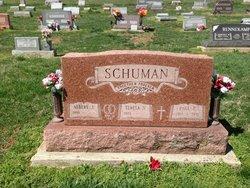 Paul P Schuman