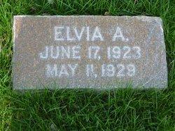 Elvia Anna Combs