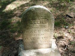 Allie Cole
