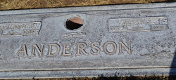 Raymond R Anderson