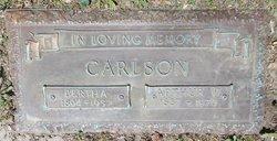 Arthur W Carlson
