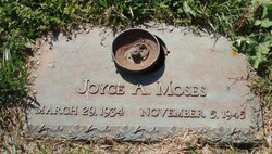 Joyce Aileen Moses