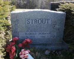 Harold Norman Strout
