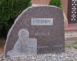 Celida <i>Borrego</i> Lopez
