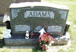 Lueza Jane <i>Heater</i> Adams