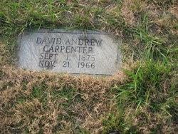 David Andrew Carpenter