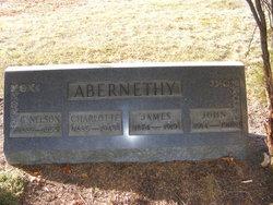 George Nelson Abernethy
