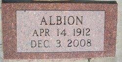 Albion John Avery